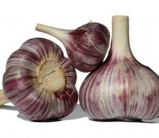 1171156_fresh_garlic_1